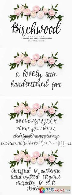 Birchwood Calligraphy Font 550314 hand written font - fun with floral