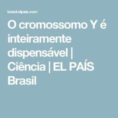 O cromossomo Y é inteiramente dispensável | Ciência | EL PAÍS Brasil