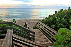 A pathway to heaven in Jupiter, FL.