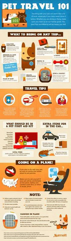 For those animals lovers out there! Traveling for pets 101!