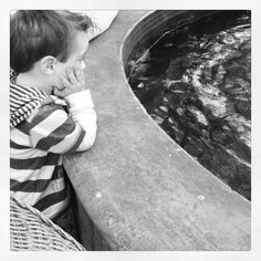 Contemplating Life - 44 Stanley - July 2012