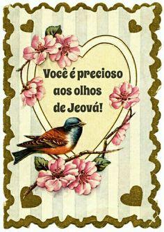 Você é precioso aos olhos de Jeová!