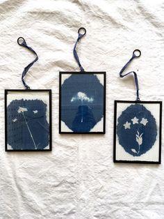 framed cyanotype