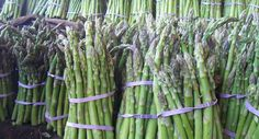 Celebrate Local Asparagus at Magpie Café