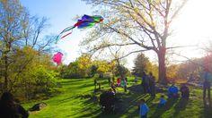 New York, Central Park; Kites