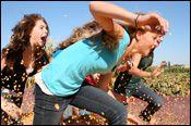 Dixon, CA. Cool Patches, Pumpkins, Treats, Cool Stuff, Sweet Like Candy, Goodies, Pumpkin, Butternut Squash