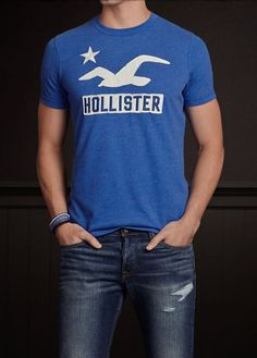 Camiseta Hollister HO1347
