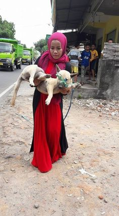 Muslim Woman Defies Bullies To Care For 'Unclean' Stray Animals