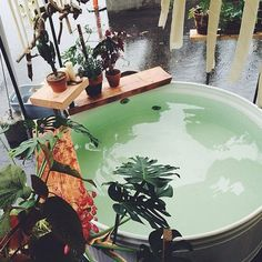 Turn your next soak in your stock tank pool into a rainforest retreat with plenty of plant life.