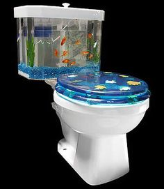 I would so have a toilet aquarium!  It would drive the cats crazy too.