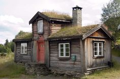 A fine example of a traditional log home with a natural roof. Norway