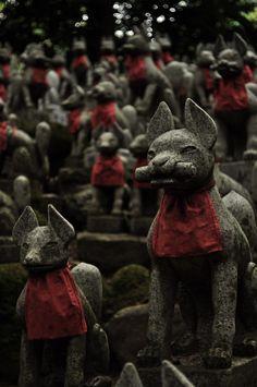 Japanese Fox, Japanese Shrine, Japanese Folklore, Japanese Culture, All Types Of Cats, Folk Religion, Fox Spirit, Turning Japanese, Anubis