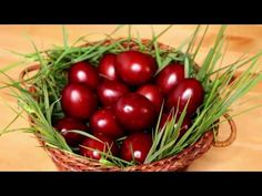 Oua vopsite natural pentru Paste | Maria Popescu - YouTube Easter Traditions, Pesto, The Creator, Eggs, Fruit, Vegetables, Youtube, Food, Easter Activities