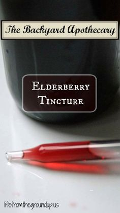 Elderberry Tincture - lifefromthegroundup.us