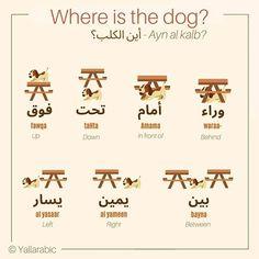 Arabic Sentences, Arabic Phrases, Arabic Words, Arabic Conversation, Arabic Language, Learning Arabic, Prepositions, Learn English, Languages