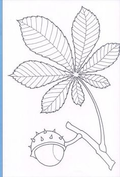 Use the arrow keys to move to the displayed image - Coloring Pages Fall Coloring Pages, Pattern Coloring Pages, Autumn Activities, Art Activities, Fall Leaf Template, Preschool Crafts, Crafts For Kids, Mandala, Autumn Crafts