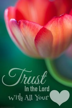 Trust in the Lord❤️