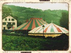 Quel cirque!    Cirque Helvetia