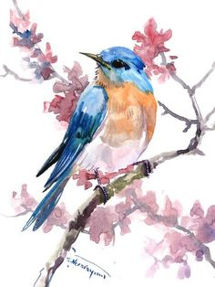 birds painting Giclee Print: Bluebird 9 by Suren Nersisyan : Watercolor Bird, Watercolor Animals, Watercolor Paintings, Bird Paintings, Bird Artwork, Watercolor Tattoos, Indian Paintings, Watercolor Portraits, Watercolor Landscape