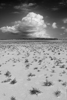 On The Green Beach (Het Groene Strand) on Terschelling #Wadden #Eiland #Nederland
