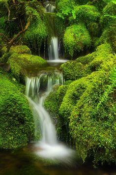 beauty of nature Beautiful Waterfalls, Beautiful Landscapes, Beautiful World, Beautiful Places, Natur Wallpaper, Nature Scenes, Nature Pictures, Amazing Nature, Wonders Of The World