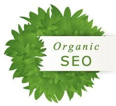 How To Take Benefits Of Small Business SEO Services To Earn More Profit : seo marketing services, search engine optimization expert, seo search engine marketing, organic seo services, engine search optimization Seo Optimization, Search Engine Optimization, Hosting Company, Seo Company, Internet Marketing, Online Marketing, Seo Marketing, Content Marketing, Digital Marketing