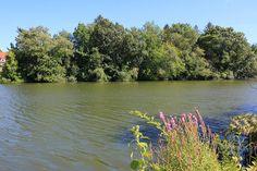 3. Edgewood Lake, Providence
