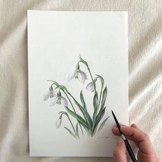 Fabric Colour Painting, Watercolour Painting, Watercolor Flowers, Paint Colors, Foto E Video, Photo And Video, Botanical Art, Art Drawings, Doodles