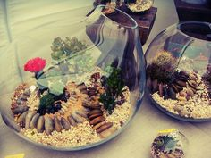 DIY Eco-Friendly Terrarium Tutorials - Sortrature