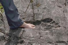 """Mysterious Giant Footprints In China: Evidence That Huge Humans Roamed The Earth? Beings of incredibly high statue are mentioned in several ancient texts and sacred books. """"On the Earth there once were giants."""" Greek poet Homer wrote in 400 B.C."""