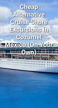 Cheap Alternative Cruise Shore Excursions in Cozumel, Mexico (On Your Own) Cozumel Mexico Cruise, Cozumel Excursions, Bahamas Cruise, Cruise Port, Shore Excursions, Cruise Travel, Cruise Vacation, Cruise Packing, Packing Lists