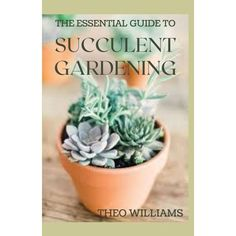 Growing Succulents, Succulents In Containers, Cacti And Succulents, Container Plants, Planting Succulents, Container Flowers, Succulent Gardening, Succulent Care, Succulent Terrarium