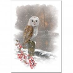 A solemn barn owl is the focus of the tranquil winter scene depicted on this mini greeting card.<br><ul><li>This premium boxed set includes 20 cards and 21 coordinating envelopes.<li>Quality card stock takes pen beautifully.<li><b>Cards are small -- they measure 5 inches wide by 3-1/2 inches high.</b><li>Gentle snowflakes swirl throughout this restful image, which includes the owl, branches of holly, and a secluded woodland pond.<li...