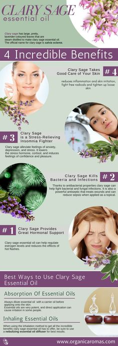 4 Incredible Benefits of Clary Sage Essential Oil There are several incredible benefits clary sage essential oil has, but the most common can alleviate problems that plague many people throughout their lifetime. #OrganicAromas | #essentialoils #diffuser #healthy #healthylife #holistic #natural #chemicalfree #essentialoilfacts #essentialoils101 #naturalemedy #homeremedies #healthy3d @healthy3d