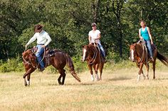 Downunder Horsemanship | Training Tip of the Week: Trail riding tip: Stop your horse from following too closely behind other horses.