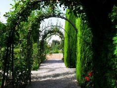Jardines del Generalife Granada 159788