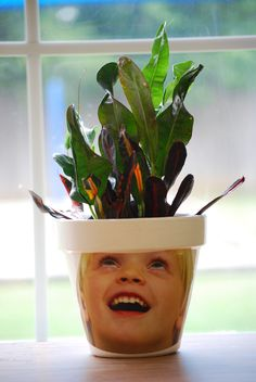 Flower Pot Graduation Craft!  We made these for our Pre-Kindergarten graduation this past June.  Photos of the kids with beans bags on top of their heads were taken (this made them look up), made into 4x6 prints, cut out, and glued onto a white terra-cotta flower pot with Mod Podge.