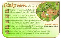 Fruit Facts, Raw Food Recipes, Healthy Recipes, Food Art, Gardening Tips, Health And Beauty, Detox, Health Fitness, Plants