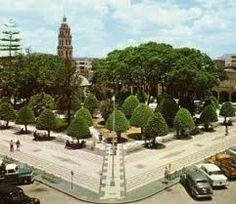 Jardín del centro.