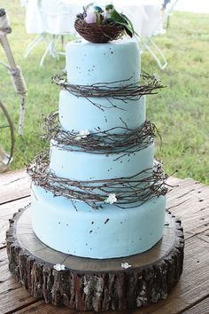 """""""Robin's Egg Blue"""" cake adorned with grapevines, sugarpaste blossoms and lovebirds by Kelly McClain Roberts ."""