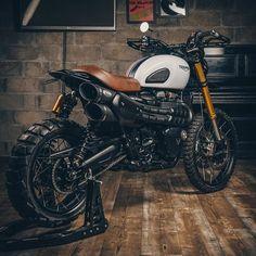 Triumph Scrambler, Triumph Motorcycles, Vintage Motorcycles, Motorcycles For Sale, British Motorcycles, Custom Cafe Racer, Cafe Racer Bikes, Cafe Racers, Motorcycle Camping