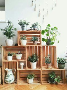 Create your own indoor succulent garden using crates! Genius