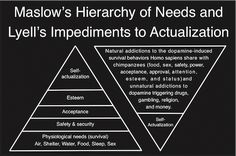 Dopamine Awareness and Self-Actualization, Rethinking Maslow's Hierarchy of Needs | TheDopamineProject.org