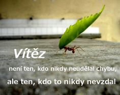 A ani nevzdám Motto, Proverbs, Motivational Quotes, Jokes, Bible, Humor, Motivational Life Quotes, Biblia, Motivation Quotes