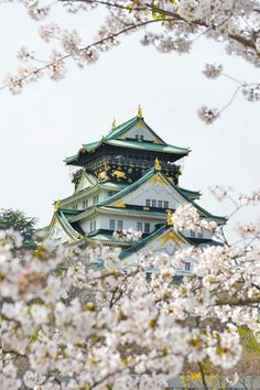 Osaka Castle in the south of Japan, one of Japan's most recognisable landmarks. #OsakaCastle #Osaka #Japan #FarEast