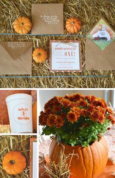 Pumpkin Fall Party Collection - Birthday Party Ideas for Kids Thanksgiving Birthday Parties, Halloween First Birthday, Boys First Birthday Party Ideas, Adult Birthday Party, Harvest Birthday Party, Thanksgiving 2020, 2nd Birthday, Happy Halloween, Little Pumpkin Party