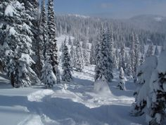 Steamboat Springs CO  #winter #steamboat need to make the time to go out west this year
