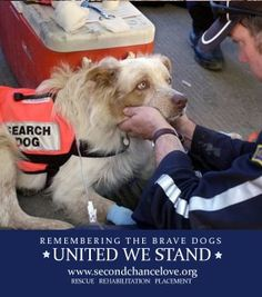 United We Stand 9/11 We salute our Silent Hero's. Share them with pride.