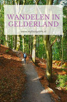 Op deze pagina vind je de mooiste wandelroutes in de Provincie Gelderland. Met praktische tips en alle wandelingen op één handige overzichtskaart. #wandelen #wandelingen #wandelroutes #Gelderland #Veluwe
