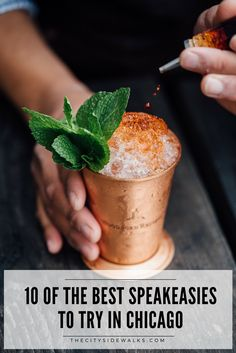 If you're visiting Chicago, check out these travel tips from my Chicago travel guide on the best speakeasies to find in the city. Explore 10 different speakeasies in Chicago that locals love!